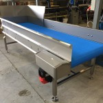 Loose Leaf Vegetable Inspection Conveyor