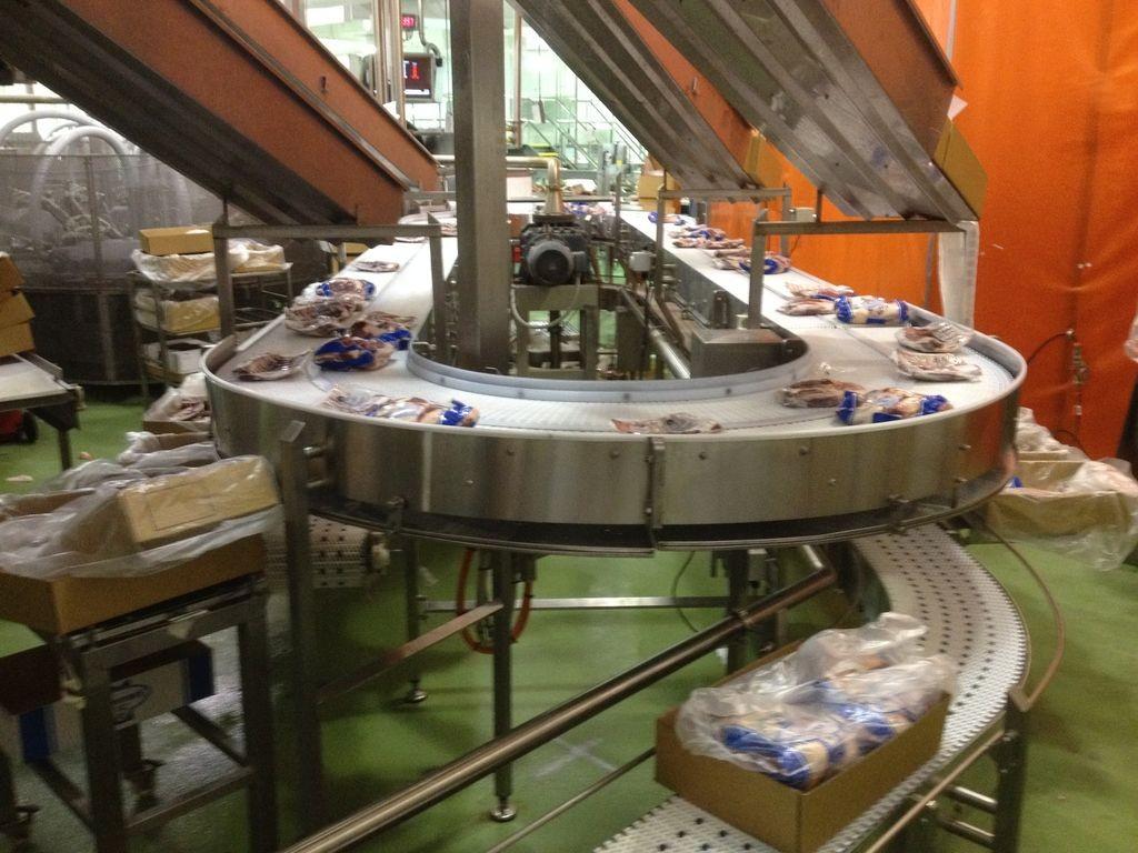 Stainless Steel Carcass Conveyor