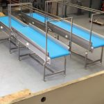 Loose Leaf Vegetable Inspection Conveyors